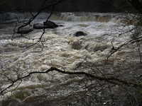 roiling waters